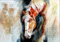 Animal Message III